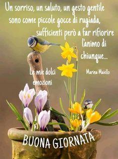 Plants, Italia, Plant, Planets