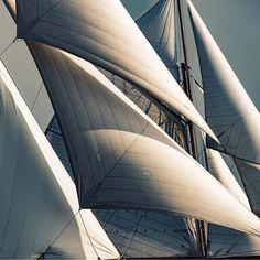 """S A I L S  Photo by @kurtarrigo  #sailing #sails #sailyacht"""