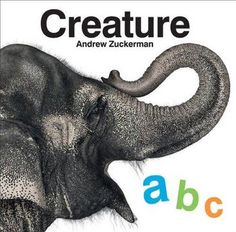 Creature ABC by Andrew Zuckerman. An elegant addition to any library, this deluxe alphabet book features 120 pages of Andrew Zuckerman's breathtaking wildlife photography. From alligator to zebra, each featured animal boasts two striking studio portraits against a clean white background, offering a unique up-close view of the animal kingdom. Readers can flip to a helpful glossary in the back for extra information.