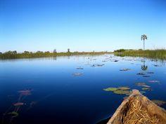 AFAR.com Highlight: Tour Okavango on a Mokoro - Botswana