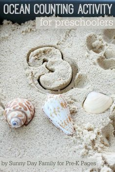 Shells, numeral cookie cutters, and sand are used for a fun ocean-themed counting activity for preschoolers and kindergarteners. Counting Activities For Preschoolers, Sea Activities, Number Activities, Preschool Learning, Infant Activities, Early Learning, Preschool Activities, Pre K Pages, Ocean Unit