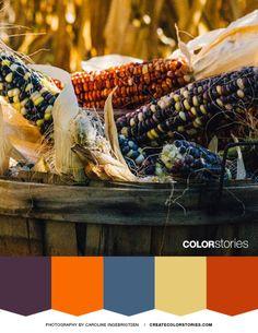Color Stories: Harvest Gems Color Palette
