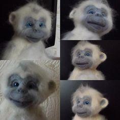 Добрый вечер! Представляю вам обезьянку, ростик ее18см, зовут Снежинка. Ищем…