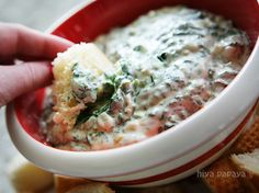 Dip Recipes on Pinterest   Spinach Dip, Cranberry Fruit and Black Bean ...