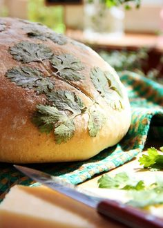 Mediterranean Cheese-Stuffed Bread Decorated with Herbs.