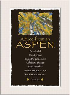 Advice from an Aspen Mini Matted Print