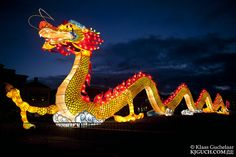 Chinese Dragon in Assen, and Saint Louis, MIssouri USA Chinese Dragon Art, Pre Production, Magical Creatures, Landscape Photos, Missouri, Dragons, Beautiful Places, Lion, Flag