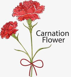 Carnation Tattoo, Red Carnation, Mother's Day Background, Vector Background, Watercolor Effects, Retro Wallpaper, Learn To Paint, Carnations, Artist Art