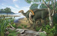 *Parasaurolophus. Artwork by Danielle Dufault