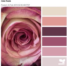 """Rose hues"" colour palette, on design seeds Colour Pallette, Color Palate, Colour Schemes, Color Combos, Color Patterns, Pantone, Decoration Palette, Design Seeds, World Of Color"