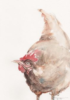 Chicken original watercolor painting animal art by FrancinaMaria