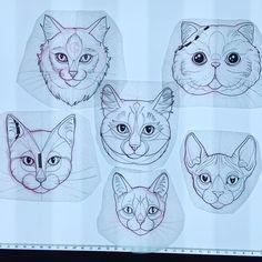 Kitties! Up for grabs this weekend at #minneapolistattooconvention #Minneapolis #minnesota #cats #tattoo #cattattoos #meow #persian #sphinx #ragdoll #tabby