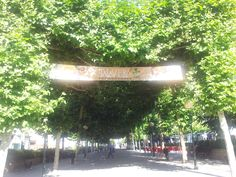 Paseo de los Arqueros. #Talavera #MarcaTalavera Neon Signs