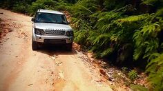 Land Rover: Jungle by Redwood