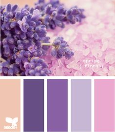 Purple Palette Color Combinations Spring Colour Palettes Paint