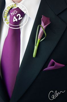 The groom's boutonniere is one of the few accessories for the groom. The small boutonniere declares the identity of the groom. The groom's boutonniere should be based on simplicity and smallness. Remember, the boutonniere and Read more… Boutonnieres, Groom Boutonniere, Purple Boutonniere, Purple Groomsmen, Groom And Groomsmen, Groomsman Attire, Purple Calla Lilies, Calla Lily, Purple Wedding