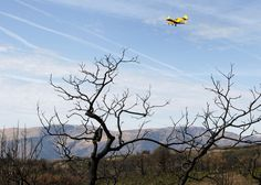 Native and non-native seed mixture is spread by plane across  burned areas during this Summer's  Wood Hollow Fire near Mount Pleasant.  The seeds will help with erosion problems and provide food for wildlife as the ground heals. (Al Hartmann  |  The Salt Lake Tribune)
