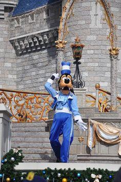 Goofy In Disney World