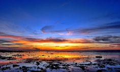太平島系列》海巡分隊長紀錄太平島之美 喚醒世人重視生態保育│台灣行/提供各國來台自助旅遊—吃丶喝丶玩丶樂…最佳攻略!