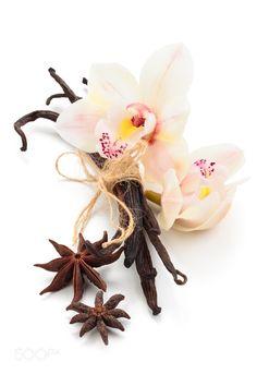Pic: Vanilla pods.