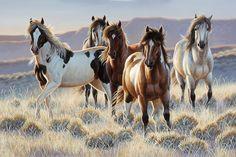 Pferd - Young Blood - Fototapete & Tapete - Photowall