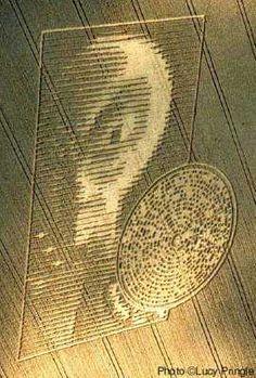 Alien Workshop Crop Circles Illusion - http://www.moillusions.com/alien-workshop-crop-circles-illusion/