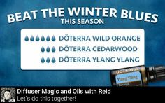 dōTERRAs Wild Orange Cedarwood and Ylang Ylang essential oils combine to make the perfect pick-me-up scent to return to after a challenging day. Do you have any blends you like to use to support your familys mental health and wellbeing?   Get your FREE health and wellness resource guide http://ift.tt/2rJlbda            #겨울 #winter #가을 #snow #cold #snowboard #ski #snowboarding #fall #christmas #spring #skiing #ice #snowing #instawinter #wintertime #warm #diffuser #디퓨저 #essentialoils