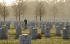 A bald eagle lands on a tombstone at dawn in Fort Snelling military cemetery near Minneapolis, Minnesota...amazing...