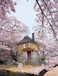 Beautiful tree house amongst blossom trees. Terunobu Fujimori's Tetsu Teahouse, Japan Beautiful Tree Houses, Cool Tree Houses, House Beautiful, Bird Houses, Amazing Houses, Houses Houses, Wooden Houses, Dream Houses, World's Most Beautiful