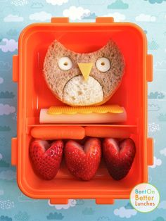 You gotta love themed school lunch ideas...this lunch features an owl sandwich (a cheese sandwich made of honey wheat & white, with mozzarella & American cheese detailing). Beneath the owl is the rest of the string cheese used for the eyes along with baby carrots and strawberry hearts.