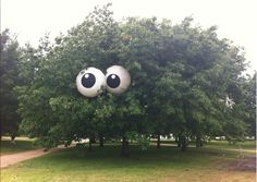 "Beach balls painted like eyes and paired up in a tree make for an ""I'm watching YEW"". Even trees like to dress for Halloween, you know?"