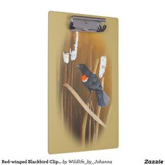 "Red-winged Blackbird Clipboard. Designed and created from my original oil painting ""Marsh Song - Red-winged Blackbirds"" by Johanna Lerwick Wildlife/Nature Artist."