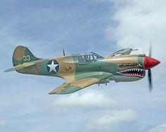 WWII P-40 Warhawk