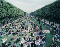 For Sale on - Picnic Allee, from the Portfolio Landscape with Figures, Lithograph by Massimo Vitali. Offered by International Fine Arts Consortium - IFAC Arts. Photography Portfolio, Color Photography, Landscape Photography, Street Photography, Martin Parr, Landscape Prints, Contemporary Landscape, Urban Landscape, Ap 12