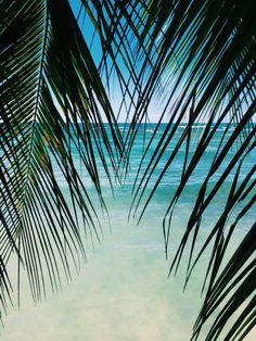 "letslivebythesea: "" Ocean and Beach Posts """