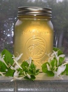 Honeysuckle Jelly - The honeysuckle is blooming like crazy right now. Good time to try this!