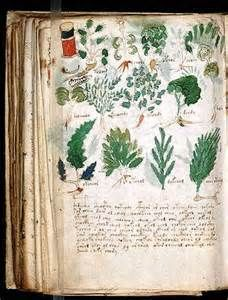 old medieval book plants - Ecosia