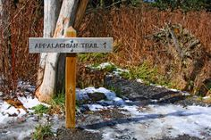 Appalachian Trail in the Great Smoky Mountains
