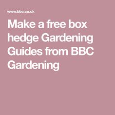 Make a free box hedge Gardening Guides from BBC Gardening