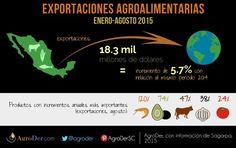 ¿Sabes cuánto han crecido las exportaciones del #CampoMexicano con respecto al 2014? #Exportaciones #agropecuarias