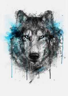 wolf splash watercolors digital illustration winter black blue