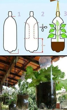 Indoor Vertical Gardening Tips and Ideas Organic gardening isn't always about food to eat. Some people enjoy growing flowers and other forms of plant life as well. You can grow anything bereft of harmful chemicals as long as you're d Garden Planters, Herb Garden, Hanging Planters, Hanging Herbs, Diy Hanging, Garden Crafts, Garden Projects, Organic Gardening, Gardening Tips