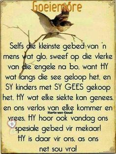 Good Day Quotes, Good Morning Quotes, Quote Of The Day, Good Morning Wishes, Day Wishes, Evening Greetings, Afrikaanse Quotes, Goeie More, Special Quotes