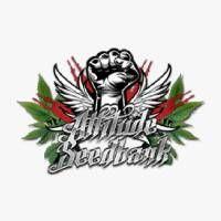 Attitude Seed Bank Cannabis Seeds Online, Buy Cannabis Seeds, Growing Weed, Cannabis Growing, Organic Gardening, Gardening Tips, Buy Weed Seeds, Raised Garden Beds, Raised Beds