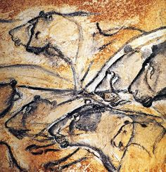 Chauvet lions. Painted in Chauvet cave, these lions are one of the few instances of large predators in cave art. Age of Chauvet cave art is approx. 28,000 - 30,000 BCE (Before Common Era.)
