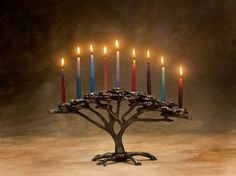 """Sand-cast bronze Hanukkah menorah, inspired by the African Acacia tree. A charming addition to your holiday home, this candelabra will also be appropriate throughout the year to provide a warm accent to your decor. This menorah takes standard menorah candles. 14"""" wide by 7"""" high, and weighs approximately 4.5 pounds. Handmade in Michigan."""