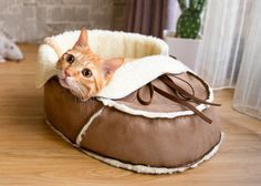 Unique Designer Pet Bed (Medium Size) for Cats, Small Dogs and Animals. Cat Furniture, Gifts for Pet Lover, Pet Products, Pet Furniture… Modern Cat Furniture, Pet Furniture, Cool Cat Beds, Niche Chat, Costume Chat, Dog Beds For Small Dogs, Cat Accessories, Cool Pets, Pet Beds
