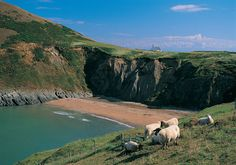 Visit Wales Official Web Site - Get great UK Holiday ideas; Family Breaks, Weekend getaways and Walking Holidays - The outdoors on your doorstep Wales Uk, South Wales, Weekend Breaks Uk, Wales Tourism, Wales Beach, Family Holiday Destinations, Visit Wales, Brecon Beacons, Places Of Interest