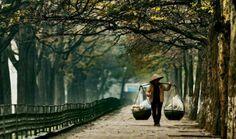 Hanoi #HipmunkBL