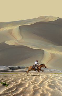 Terrific landscape photograph of a horseback rider galloping through massive sand tunes. Image by Peter Holme III.